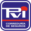 PVI Seguros Pablo Vizoso Iglesias Logo