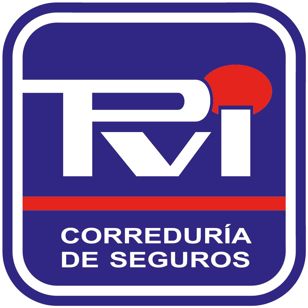 logotipo de PABLO VIZOSO IGLESIAS SA