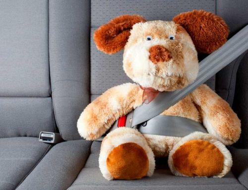 Al conducir: no discutas, no adelantes perros, no viajes con maniquíes